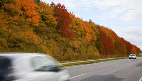 Осень в Дании Стоковое Изображение RF