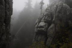 Осень в лесе Стоковое фото RF
