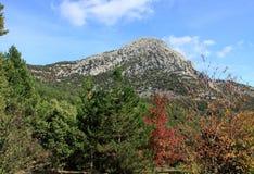 Осень в национальном парке Pollino в Калабрии Италии Стоковое Фото