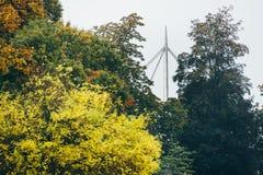 Осень в Оденсе, Дании Стоковая Фотография