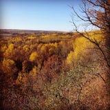 Осень вдоль Assiniboine Стоковые Изображения RF