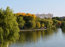 Осень в парке города Стоковое Изображение RF