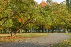 Осень в парке города стоковое изображение