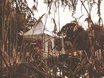 Осень в парке, деревья, тростники около пруда, кафе в парке, осенняя погода Падая листва Цвета осени стоковые изображения rf