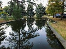 Осень в парке, деревья, тростники около пруда, отражения деревьев в пруде Падая листва Цвета осени стоковые фотографии rf