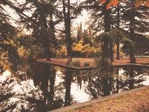 Осень в парке, деревья, тростники около пруда, отражения деревьев в пруде Падая листва Цвета осени стоковые изображения