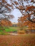 Осень в парке, университет Орхуса, Дания стоковое фото rf