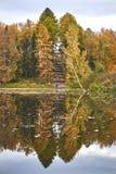 Осень в парке Стоковое Фото