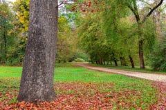 Осень в парке Racconigi Стоковые Изображения