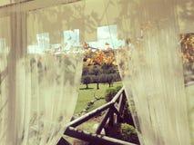 Осень в приходить Стоковые Изображения RF