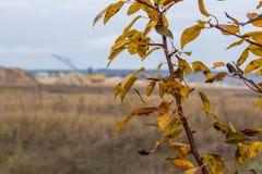 Осень в степи Tavri Стоковое Изображение
