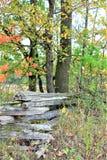 Осень в стране Стоковое Изображение