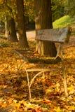 Осень в Турине Италии Стоковая Фотография