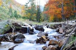 Осень в украинце Карпатах стоковое изображение rf