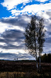 Осень в центральной России стоковые изображения