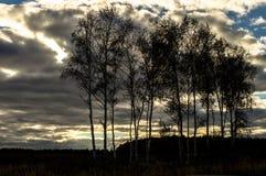 Осень в центральной России стоковое фото