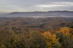 Осень в черном лесе Стоковая Фотография RF