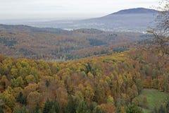 Осень в черном лесе Стоковое Изображение RF