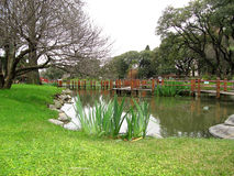 Осень в японском саде Стоковое Изображение RF