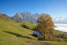 Осень в alps Стоковые Фотографии RF