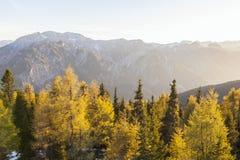 Осень в alps Стоковые Фото