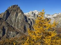 Осень в alps Стоковая Фотография