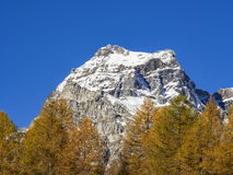 Осень в alps Стоковое Изображение