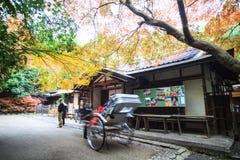 Осень в Arashiyama, Киото, Японии Стоковые Изображения RF