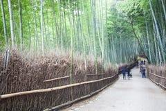 Осень в Arashiyama, Киото, Японии Стоковые Фотографии RF