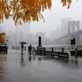 Осень в NY Стоковое фото RF