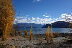 Осень в Wanaka Стоковые Фото