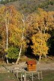 осень глубоко Стоковые Изображения