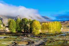 Осень городка Xinduqiao приходит Стоковая Фотография