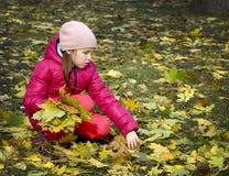 Осень Девушка в парке Стоковое Изображение RF
