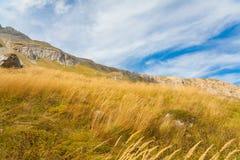 Осень дня горы стоковая фотография rf