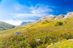 Осень дня горы стоковые изображения rf