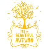 Осень дерева Стоковые Изображения