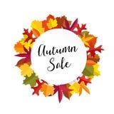 Осень, знамя продажи падения с красочными листьями Современный плоский дизайн Изолированная иллюстрация вектора Стоковые Фотографии RF