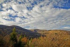 осень зоны fields погост Стоковая Фотография RF