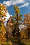 Осень золота вокруг молельни в Tsarskoye Selo Стоковые Фотографии RF