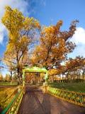 Осень золота в Санкт-Петербурге Стоковое фото RF