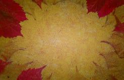 Осень золота коричневая покрасила текстуру года сбора винограда бумаги предпосылки Стоковые Фотографии RF