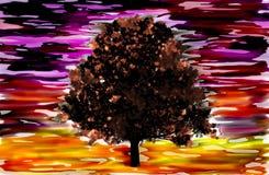 Осень здесь! Стоковое Фото