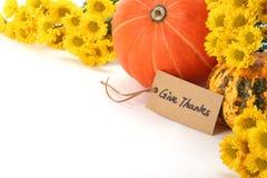 Осень или принципиальная схема благодарения Стоковые Изображения