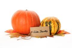 Осень или принципиальная схема благодарения Стоковая Фотография