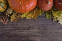 Осень или compostion хеллоуина Стоковое Изображение RF