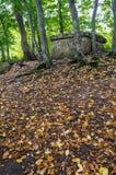 Осень инфилда дольмена Стоковое фото RF