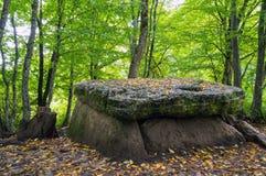 Осень инфилда дольмена Стоковая Фотография RF
