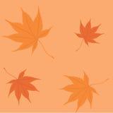 Осень лист картины Стоковое фото RF
