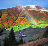 Осень и зима совместно Стоковое фото RF